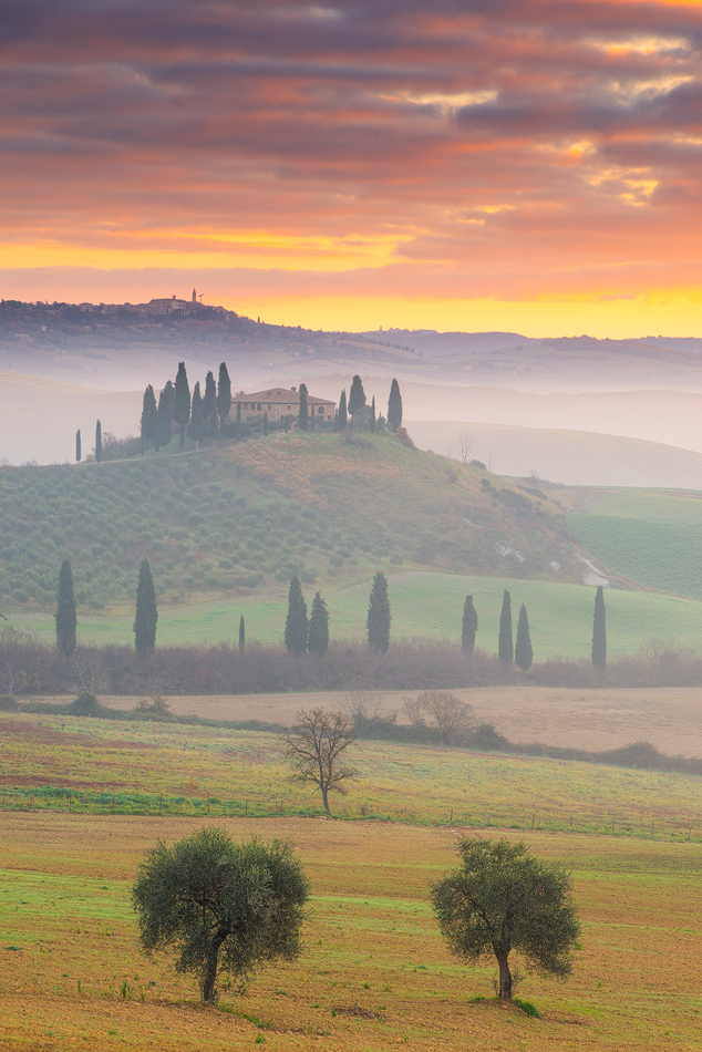 orcia111216_001b_950px
